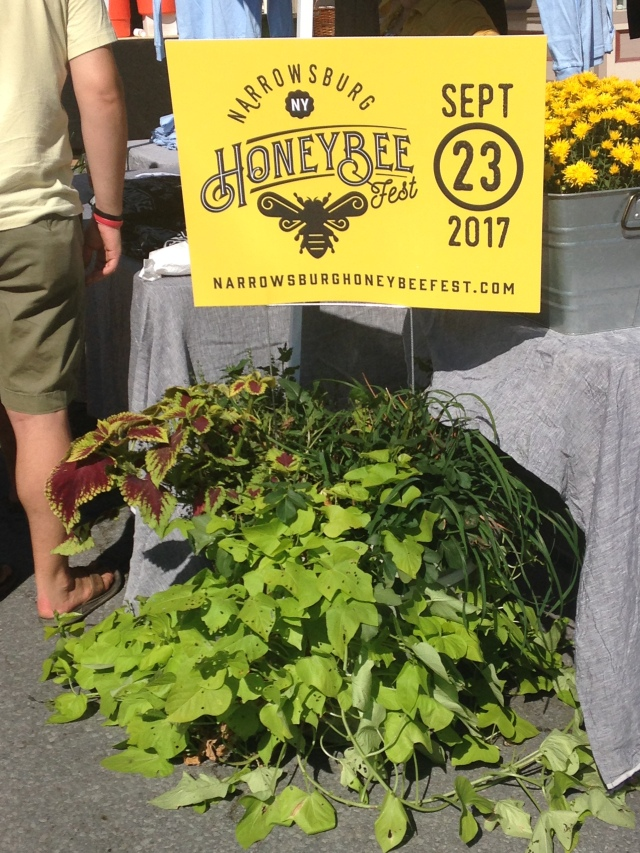 NarrowsburgBeeFest2017.JPG